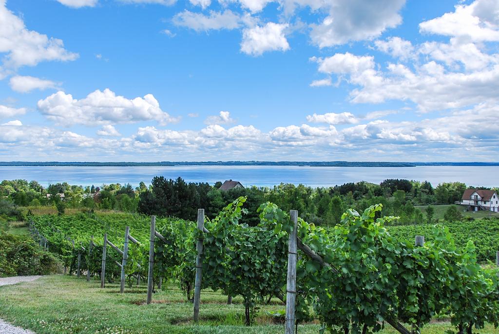 Jackson Michigan Lake Homes For Sale