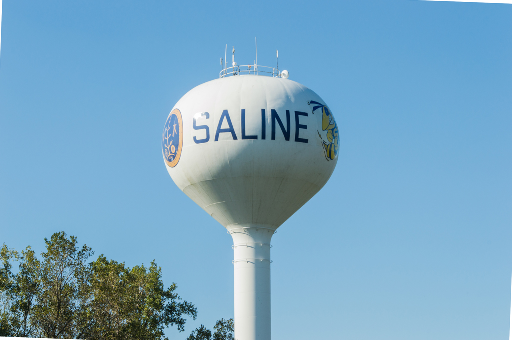 Saline Michigan Real Estate Homes For Sale Real Estate One